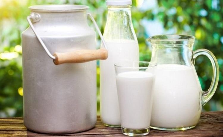 Ряженка, йогурт и простокваша: какая между ними разница